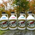 4 x 1000 ml Ahornsirup - Ihrer eigenen Wahl von Arten