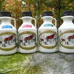 4 x 500 ml Ahornsirup